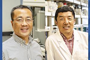 Portrait of John Hu and Xingbo Liu.