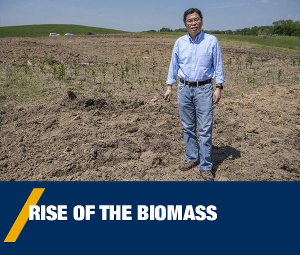 Rise of the Biomass - Jingxin Wang stands in a field